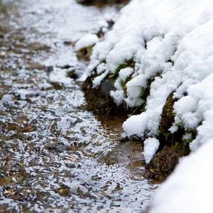 雪解けアイコン